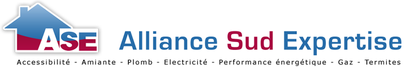 Diagnostic immobilier sur Belleville 69220